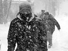 Мороз и Болтухин