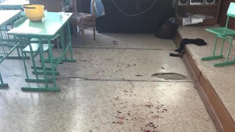 Мыши-убийцы, школьник с топором, дикая фотосессия