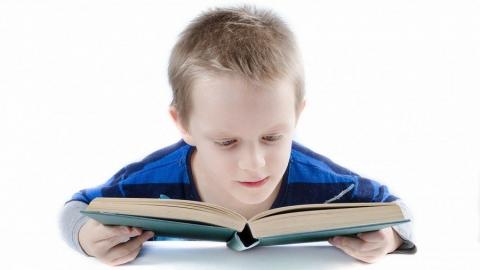 Полезно ли ГДЗ для школьников?