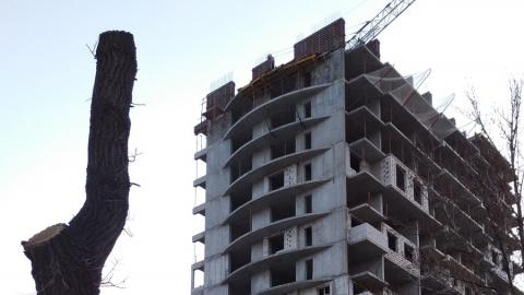 Губернатор не замечает серые строительные схемы