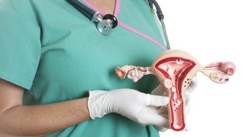 Врач акушер – гинеколог о патологиях эндометрия