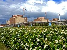 Экспертные мнения по проектам, реализуемым на Балаковской АЭС