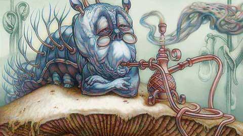 Дым коромыслом