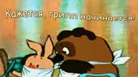 «Свиной» грипп атакует!