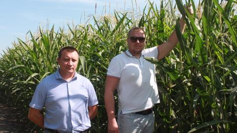 Новый взгляд на сельское хозяйство