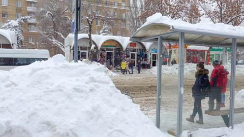 В Саратове снег «пытали» утюгом