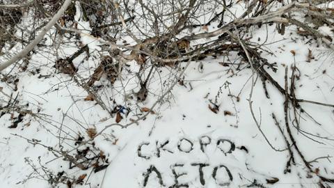 Коронавирус в Саратовской области отступает