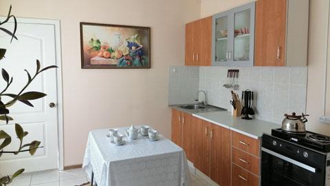Помощь пожилым В Адоевщинском доме-интернате появилась модель однокомнатной квартиры