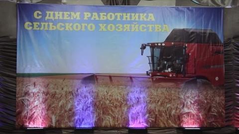 День работников сельского хозяйства в Аркадакском районе