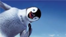Зайцы и пингвины детства