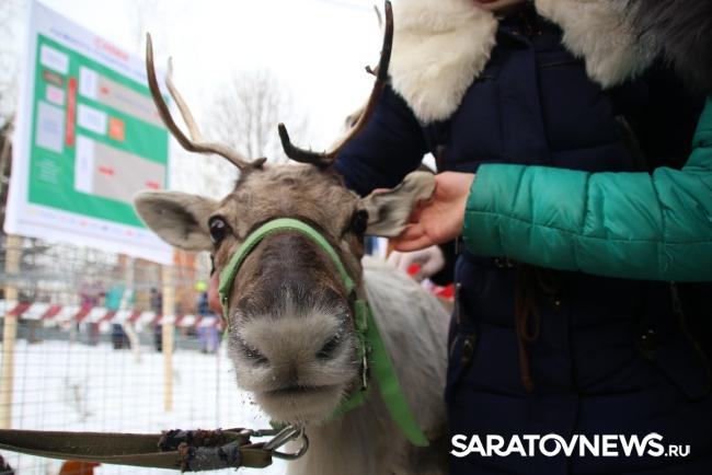 """""""Саратовская лыжня-2017"""""""