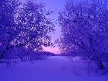 Саратов за сутки завалило снегом на 20 сантиметров
