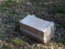 Женщина убила отца и спрятала тело в коробке в лесу