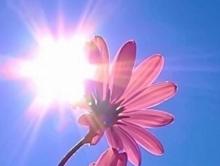 Погода в Саратове на 20 мая.  Прохладный ветер