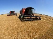 Обмолочены первые 100 тысяч тонн урожая