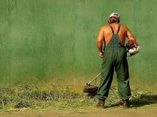 Дачник погиб, подстригая газон