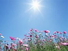 Прогноз погоды на 10 июля. Становится жарче
