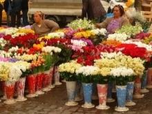 Балаковским цветочникам разрешили торговать по выходным