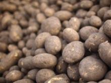 Двое негодяев угнали грузовик картофеля