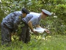 Полицейские гнались за похитителями грузовика с картофелем по лесу