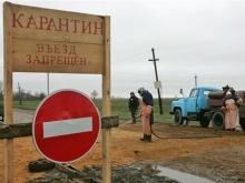 В трех селах и поселках отменили карантин по бешенству