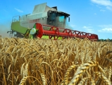 Собран второй миллион тонн урожая-2014