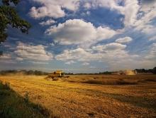 Два района преодолели 100-тысячный рубеж по сбору зерна
