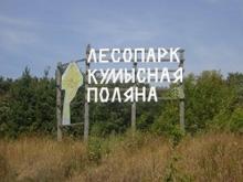 """В лагере """"Березка"""" пищеблок работал без нарушений"""