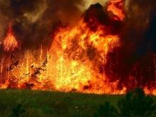 Семь районов Саратовской области в эпицентре пожароопасности