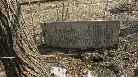 Блогер-краевед: власти полгода игнорировали сообщение о памятнике на помойке