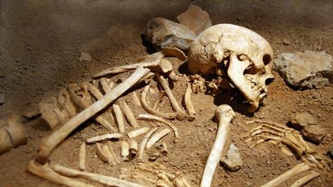 Саратовец рыл выгребную яму и нашел человеческие кости