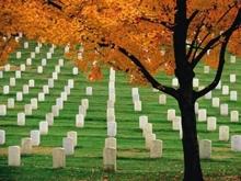 Синичкин поинтересовался судьбой кладбищ