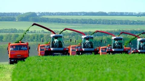Три сотни саратовских аграриев получат 600 миллионов субсидий