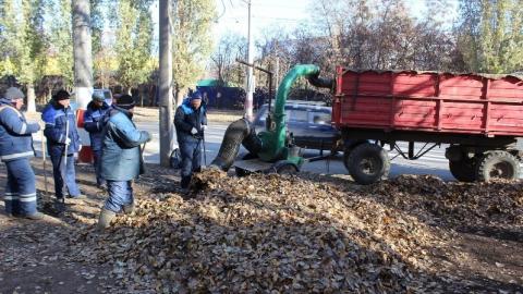 В Балакове листосос работает за четверых коммунальщиков