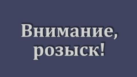 Саратовская полиция разыскивает водителя, сбившего тинейджера