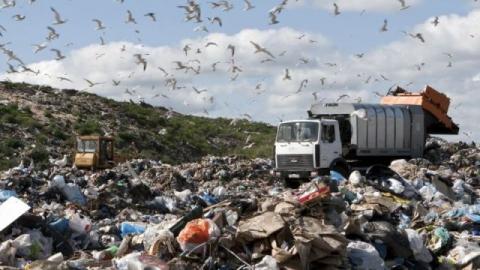 Доминантный энгельсский мусорщик заплатил 140 000 штрафа