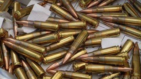 В Саратове Чапаева осудили за незаконные боеприпасы