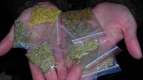 В Саратове девушка-подросток осуждена за торговлю наркотиками по скайпу