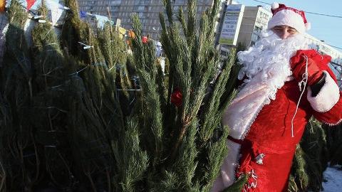 Сити-менеджеру Саратова не понравились елочные базары