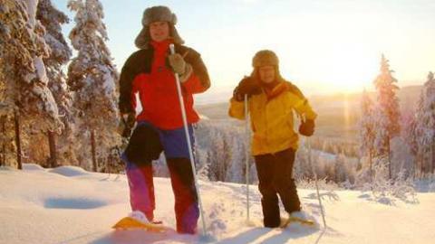 В новогодние каникулы саратовцев ждут 1 300 катков, спортплощадок и лыжных баз