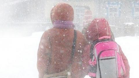Младшеклассники не пойдут в школу из-за мороза