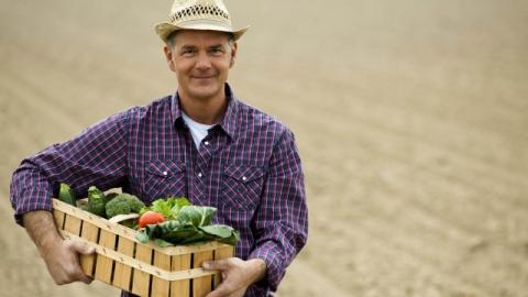 Николай Панков пообещал саратовским фермерам доступные кредиты