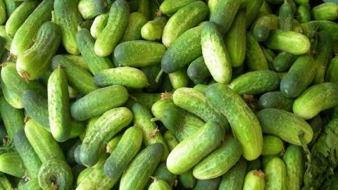 В Саратове и области продолжают расти в цене огурцы