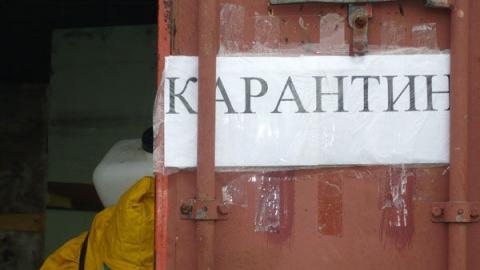 В Саратове и области на карантин закрыто 268 школ