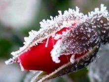 Болтухин: Похолодание придет в пятницу