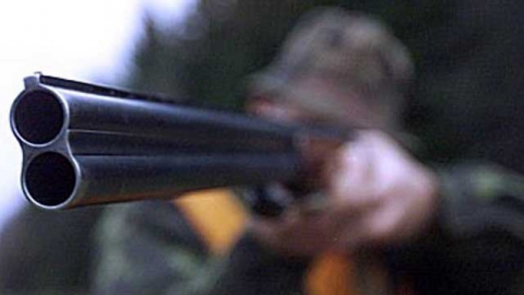 Вольский браконьер ответит по УК за гибель косули