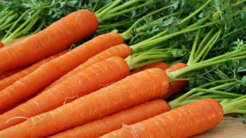 Морковь в Саратове продолжает дорожать быстрее прочих продуктов