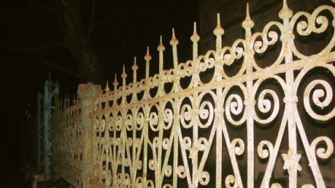 Полицейские поймали расхитителей кладбищенской ограды