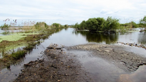 Обнародован список дорог и мостов, которые затопит талыми водами