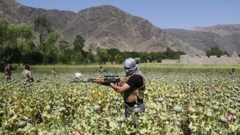 В Саратове вынесен приговор главарю наркобанды из Таджикистана